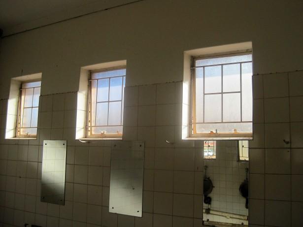 Toilet windows